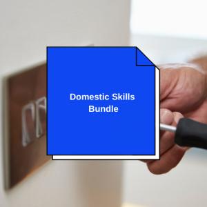 Domestic Skills: Domestic Electrician